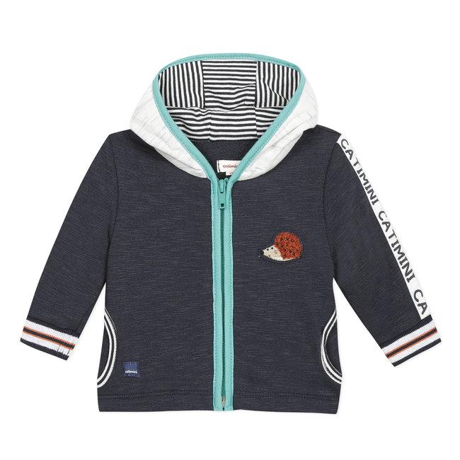 Baby boy's zipped sweatshirt with hood