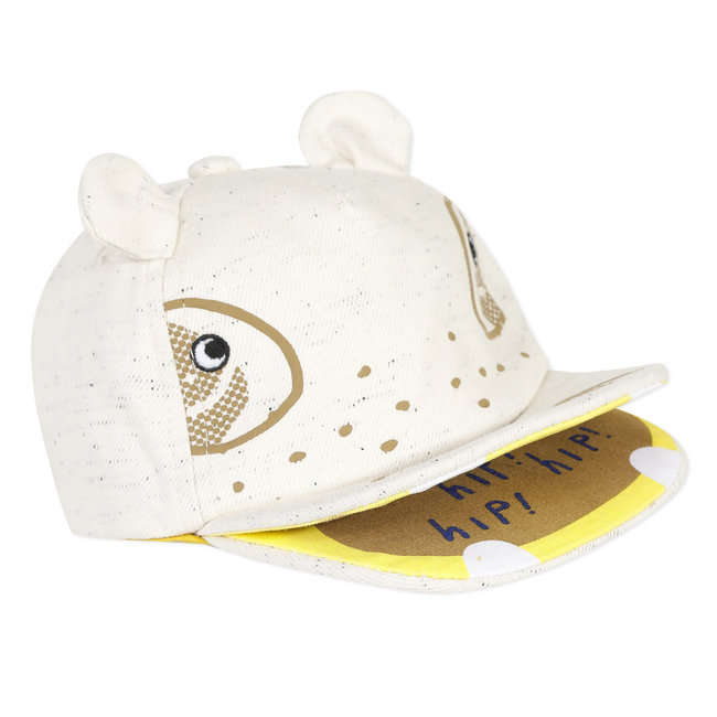 Baby boy's fun canvas cap
