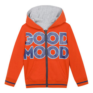 Boy's reversible zipped sweatshirt