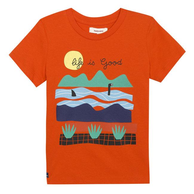 CATIMINI Boy's T-shirt with sailor motif