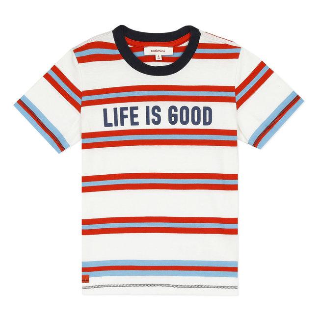 Boy's striped T-shirt