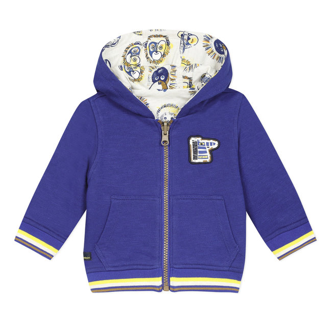 Baby boy's zipped reversible sweatshirt with hood