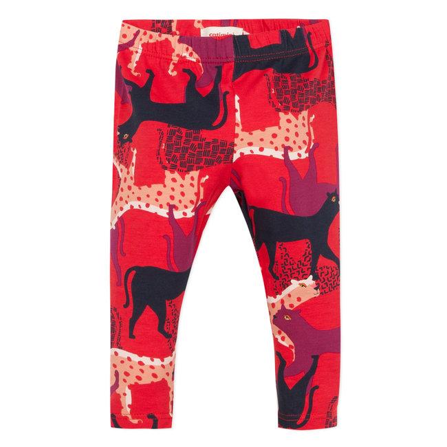 Panther print leggings