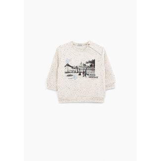IKKS Baby boys' sand desert photoprint dupioni sweatshirt