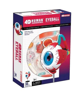 4D Master Eyeball Anatomy