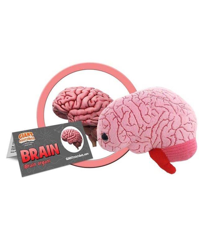 Giant Microbes Brain Organ