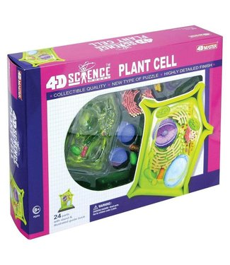 4D Master Plant Cell Anatomy Model