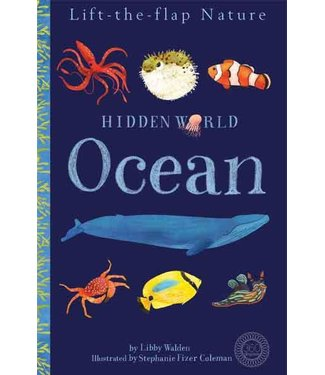 Tiger Tales Hidden World: Ocean