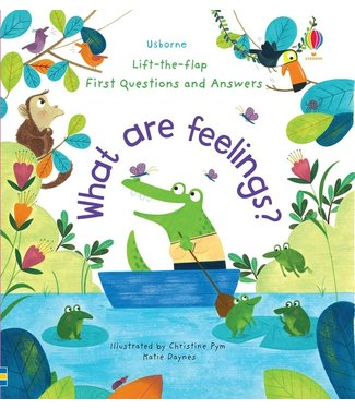 Usborne What are Feelings?