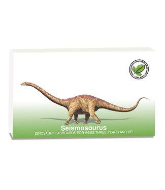 Flash of Brillance Dinosaur Flash Cards