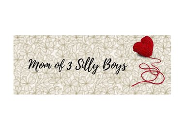 Mom of 3 Silly Boys