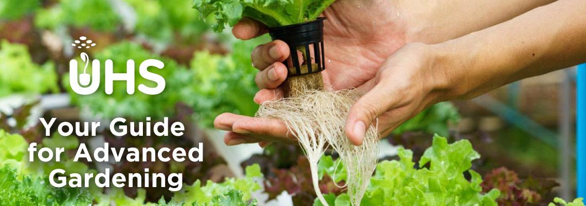 Advanced Gardening