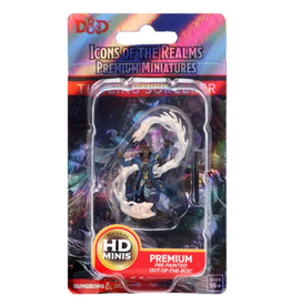 Dungeons & Dragons D&D Icons Male Tiefling Sorcerer HD Mini