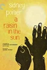 New BluRay A Raisin in the Sun Criterion (Brand New)