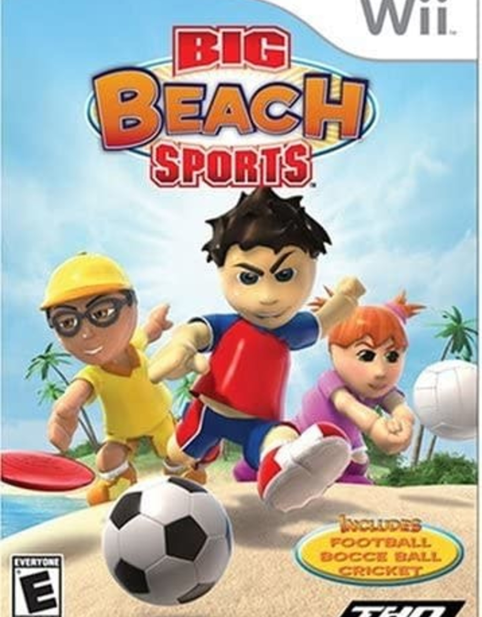 Wii Big Beach Sports (CIB)