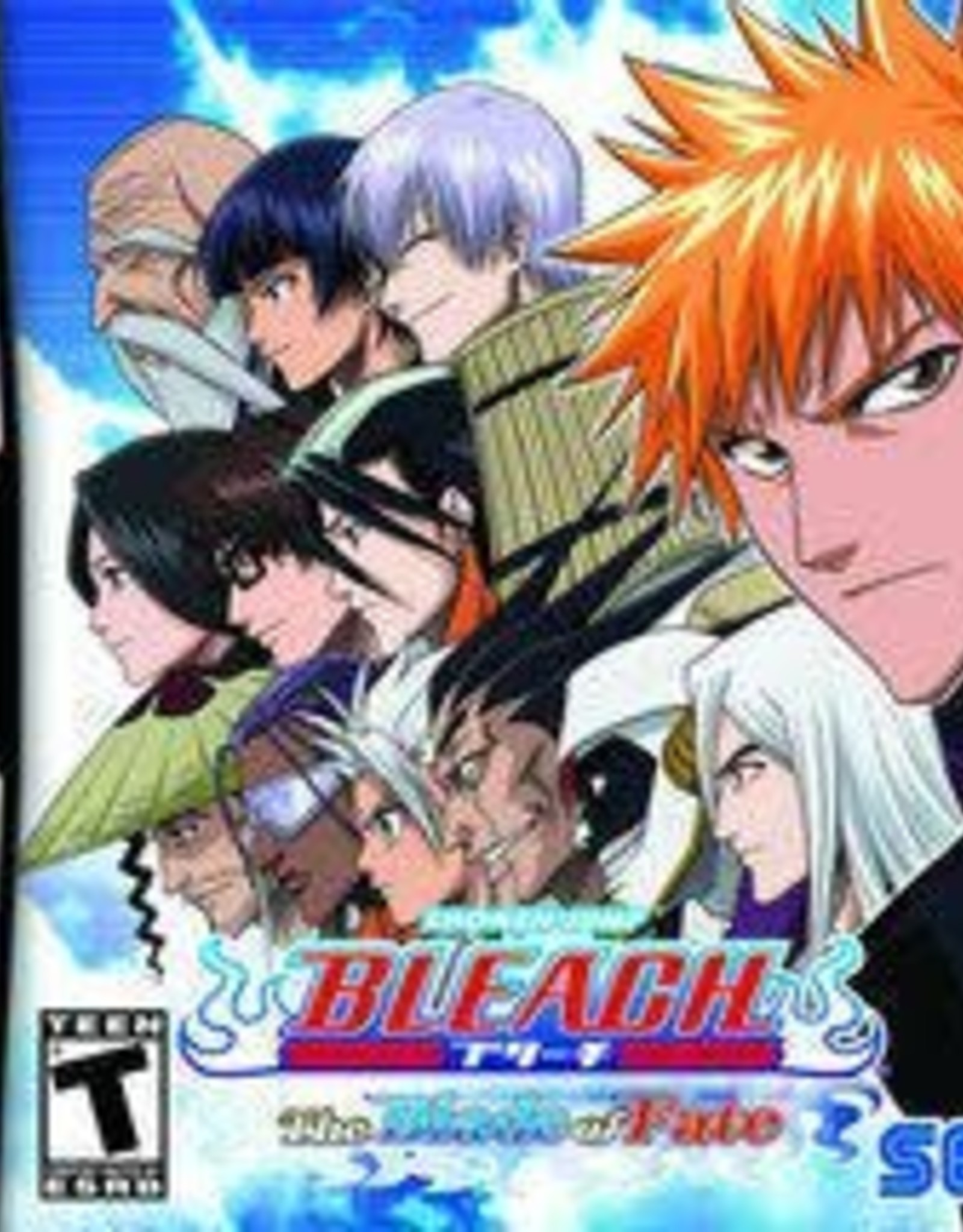 Nintendo DS Bleach Blade of Fate