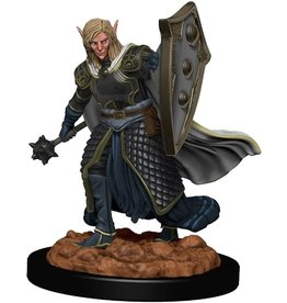 Dungeons & Dragons D&D Icons Male Elf Cleric HD Mini
