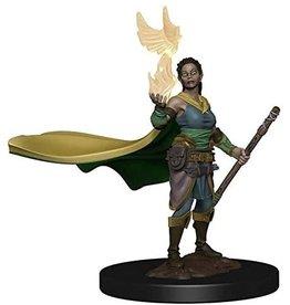 Dungeons & Dragons D&D Icons Female Elf Druid HD Mini