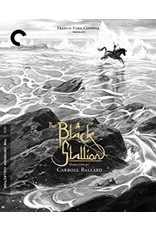 Criterion Collection Black Stallion, The 1979 Criterion Collection (Brand New)