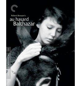 Criterion Collection Au Hasard Balthazar Criterion Collection (Brand New)