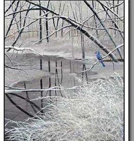 Winter Blue Jay - 16x20 Print