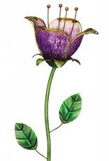 Twilight Tulip - Purple