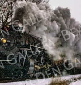 "Nick Irwin Images North Pole Express - 5"" x 7"" Matted Print"