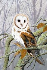 Ron Wetzel Art Misty Morning Barn Owl - 16x20 Print
