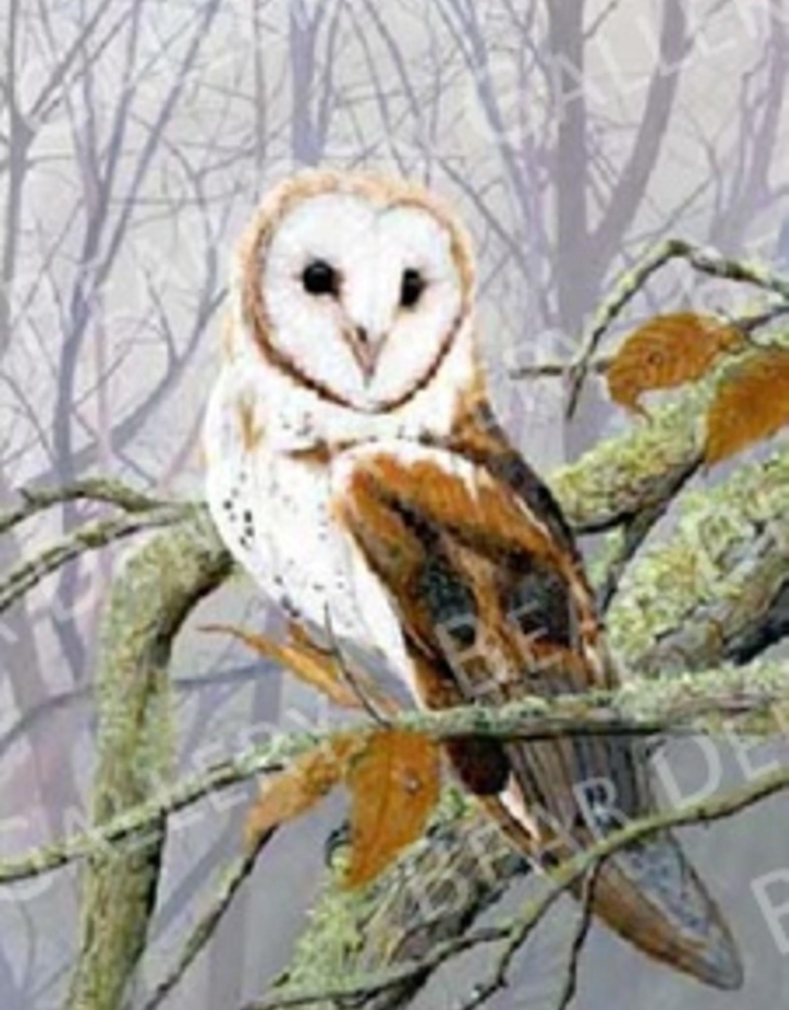 Ron Wetzel Art Misty Morning Barn Owl - 16x20 Print