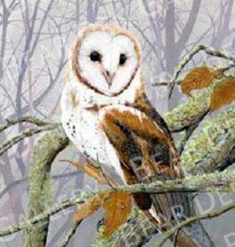 Misty Morning Barn Owl - 16x20 Print