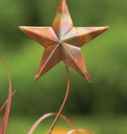 Star Stake