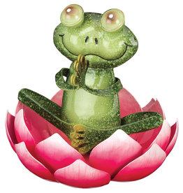 Namaste Frog