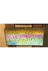 Rainbow Flank - 8x10 Canvas Wrap