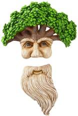 Tree Face - Wise Man & His Beard