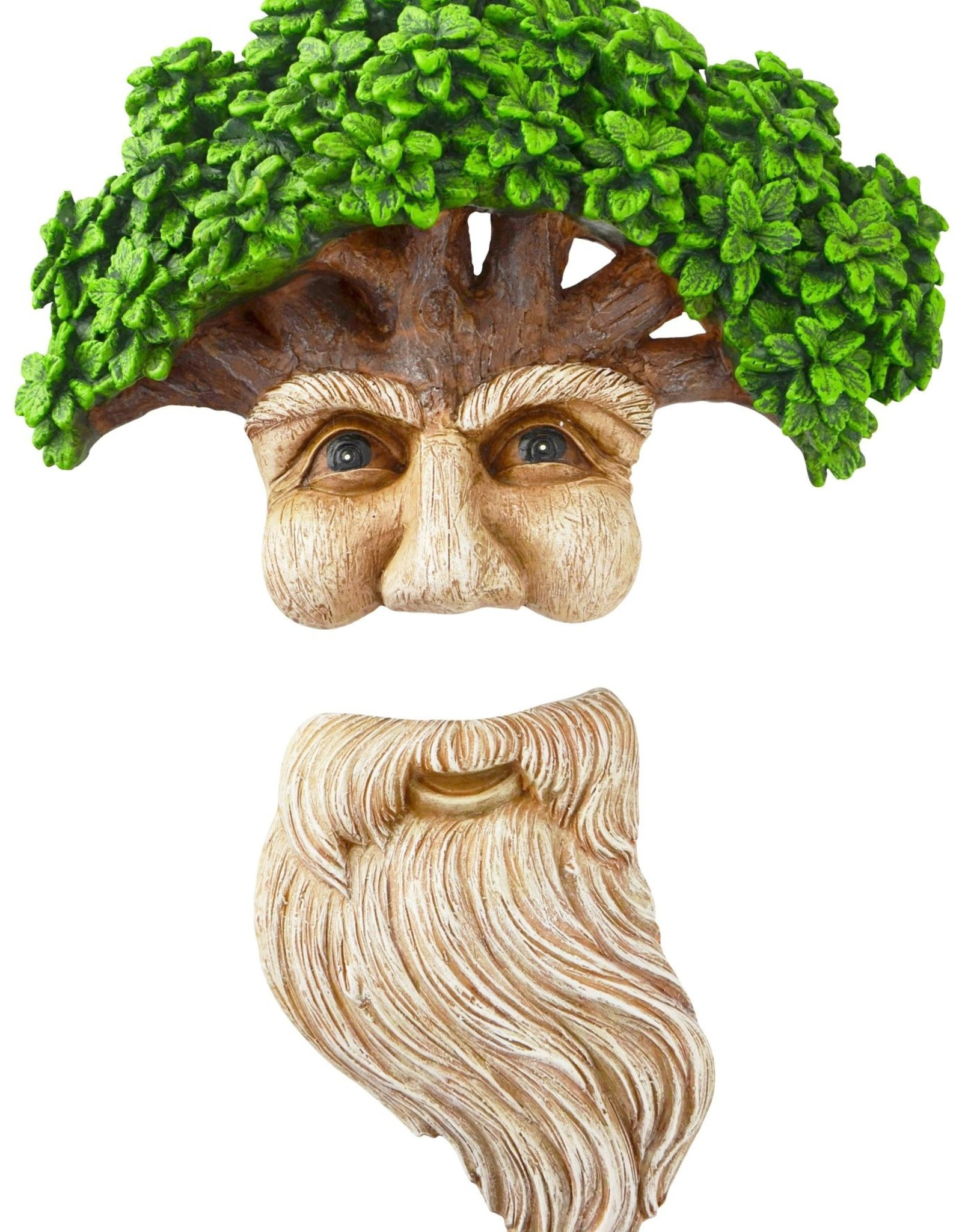 Wise Man & His Beard - Tree Face