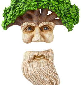 Wise Man & His Beard - Tree Face