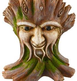 Tree Nymph - Tree Face