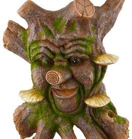 Tree Knots & Mushrooms - Tree Face