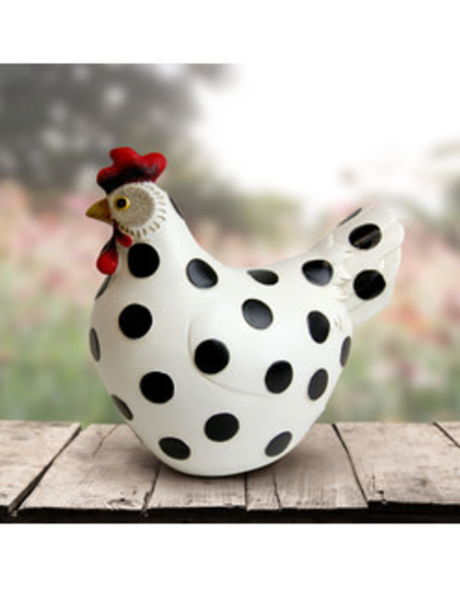 White with Black Polka Dots Hen