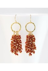 Beaded Tassel Earrings - Red Jade/Gold