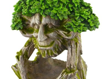 TREE FACES, GNOMES, & PLANTERS