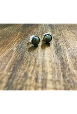 Stud Earrings - Petoskey Stone