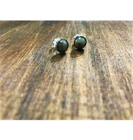 Stud Earrings - Petoskey Stone