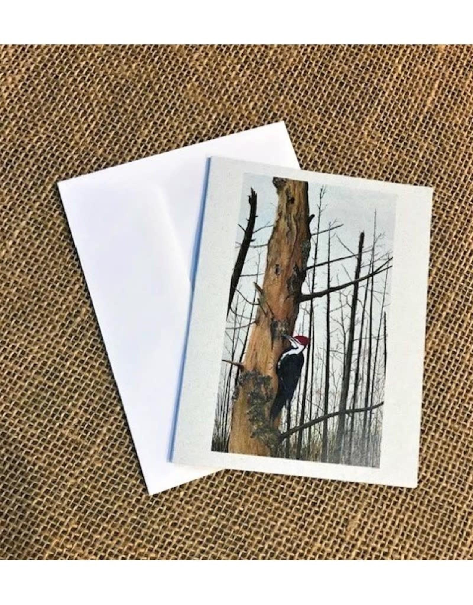 Ron Wetzel Art Ron Wetzel Card 4.5''x6''- Good Harbor Pileated