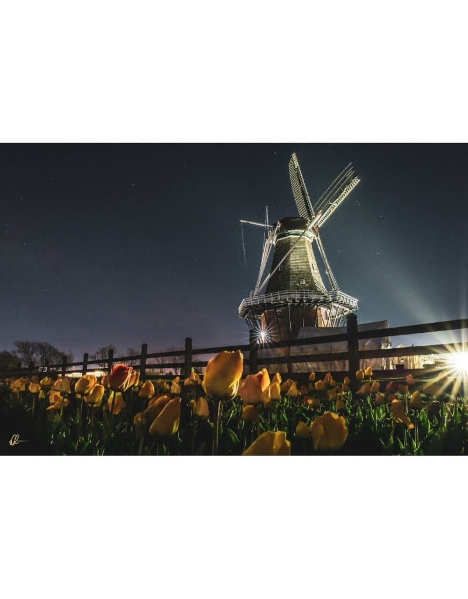 Nick Irwin Images Holland Windmill