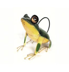 Watering Can - Tree Frog