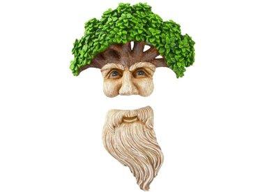 TREE FACES & GNOMES