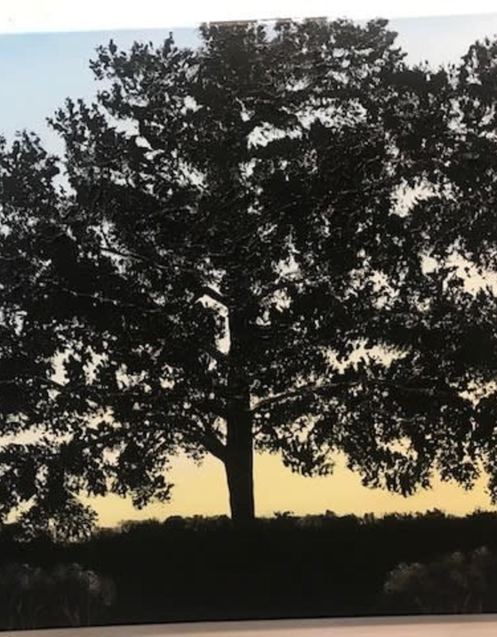 """""""Tina's Evening Tree"""" 30x40 Original Acrylic Sculpt"""
