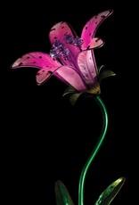 Solar Tiger Lily Stake - Pink