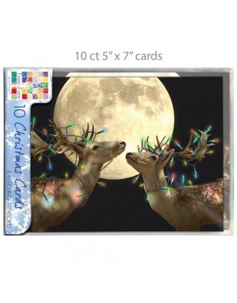 Christmas Card Holiday Lights